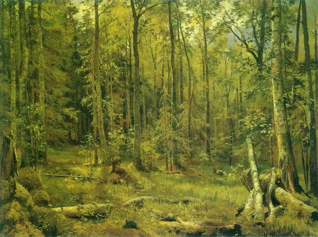 """他一生为万树传神写照 被人们誉为""""森林的歌手""""插图2"""