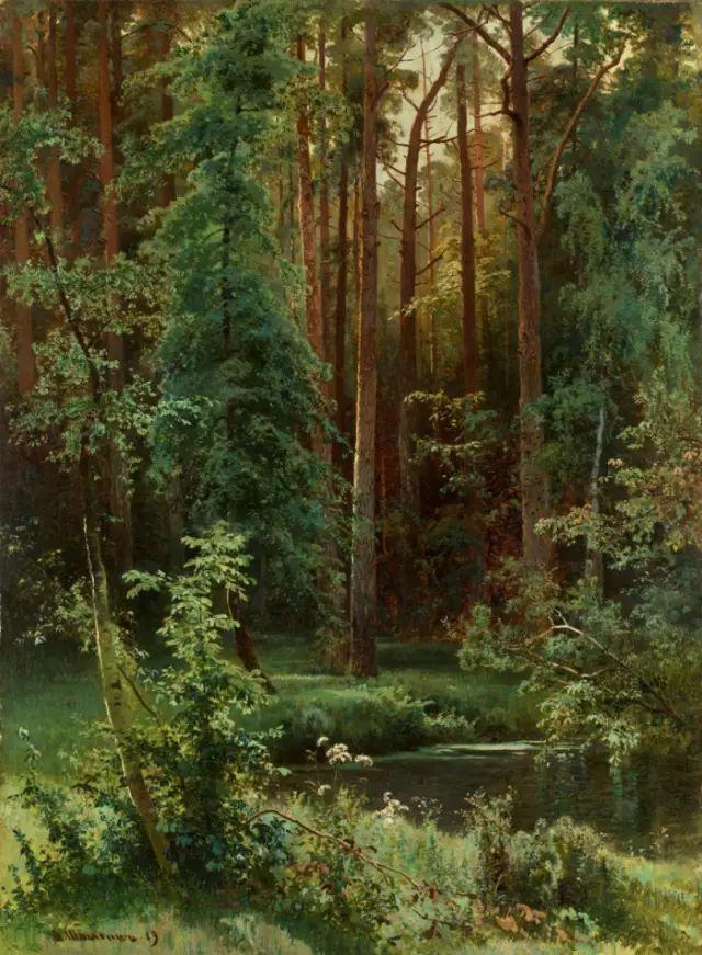 """他一生为万树传神写照 被人们誉为""""森林的歌手""""插图3"""