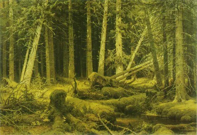 """他一生为万树传神写照 被人们誉为""""森林的歌手""""插图5"""