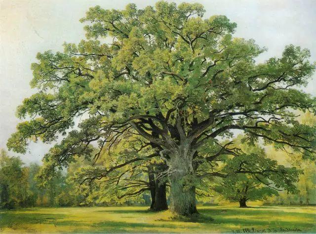 """他一生为万树传神写照 被人们誉为""""森林的歌手""""插图7"""