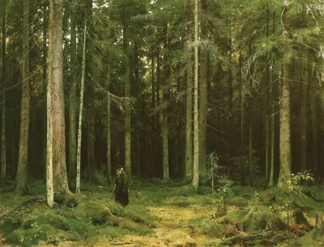 """他一生为万树传神写照 被人们誉为""""森林的歌手""""插图8"""