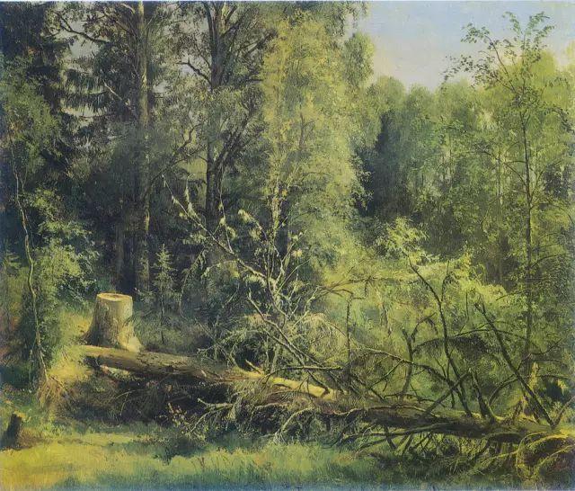 """他一生为万树传神写照 被人们誉为""""森林的歌手""""插图10"""