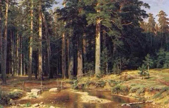 """他一生为万树传神写照 被人们誉为""""森林的歌手""""插图13"""