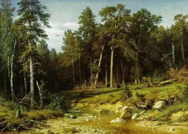 """他一生为万树传神写照 被人们誉为""""森林的歌手""""插图19"""