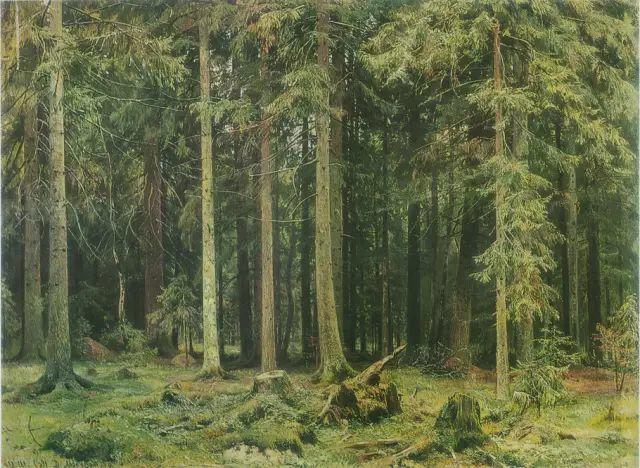 """他一生为万树传神写照 被人们誉为""""森林的歌手""""插图29"""
