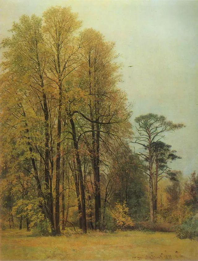 """他一生为万树传神写照 被人们誉为""""森林的歌手""""插图30"""