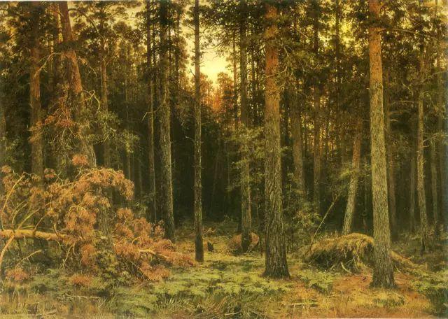"""他一生为万树传神写照 被人们誉为""""森林的歌手""""插图36"""