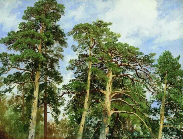 """他一生为万树传神写照 被人们誉为""""森林的歌手""""插图39"""