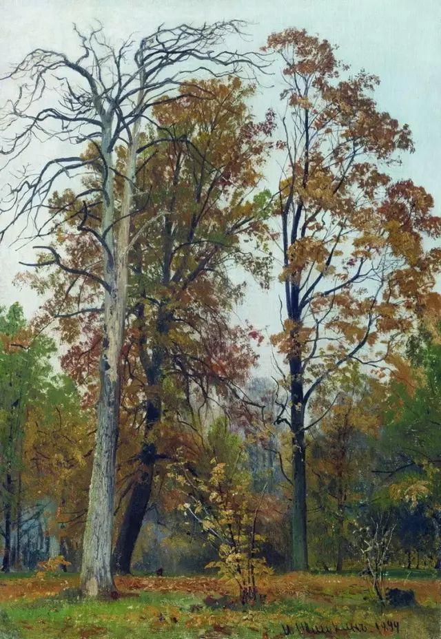 """他一生为万树传神写照 被人们誉为""""森林的歌手""""插图43"""