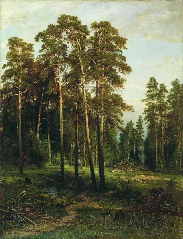 """他一生为万树传神写照 被人们誉为""""森林的歌手""""插图50"""