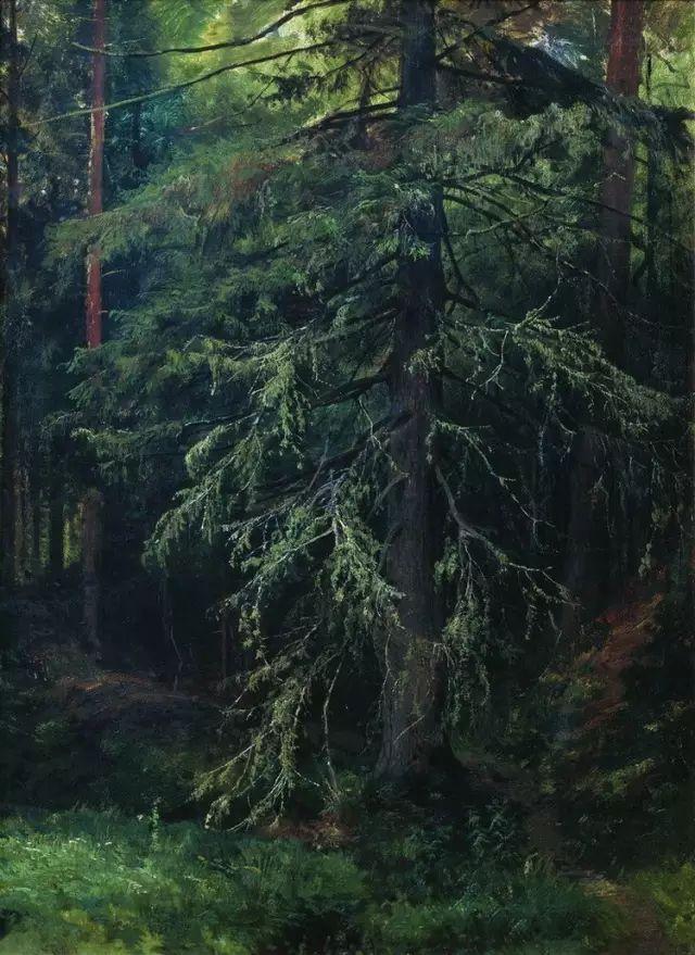 """他一生为万树传神写照 被人们誉为""""森林的歌手""""插图53"""