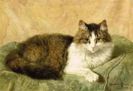 她爱猫、养猫、画猫,倾注一生才华献给猫插图5