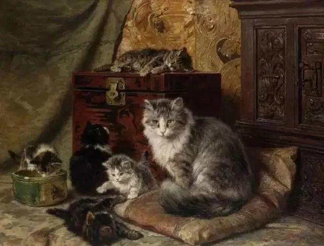 她爱猫、养猫、画猫,倾注一生才华献给猫插图9