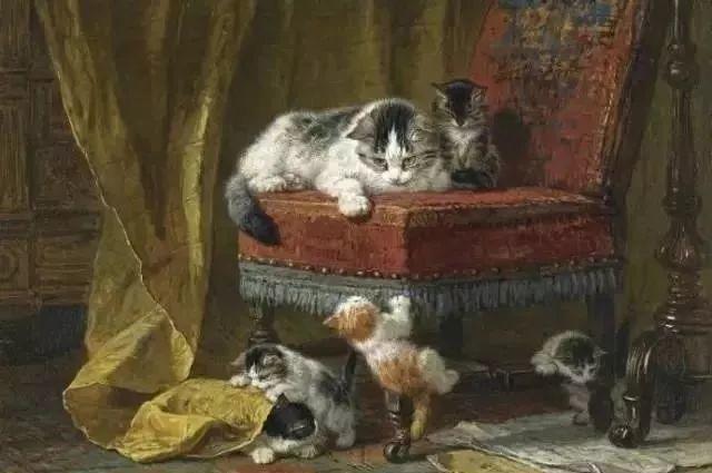 她爱猫、养猫、画猫,倾注一生才华献给猫插图27