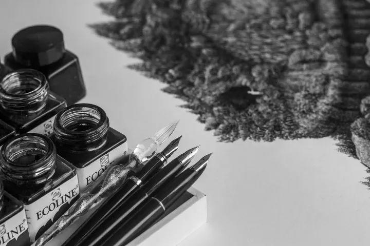 90后男孩的极品钢笔画,细腻的让人窒息插图114