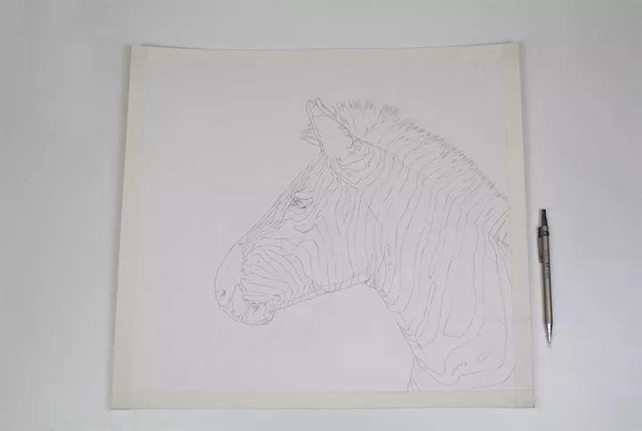 90后男孩的极品钢笔画,细腻的让人窒息插图130