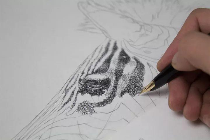 90后男孩的极品钢笔画,细腻的让人窒息插图136