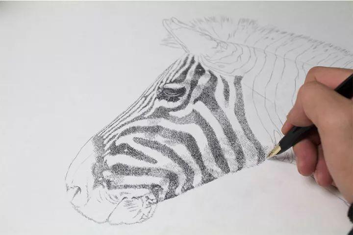 90后男孩的极品钢笔画,细腻的让人窒息插图138