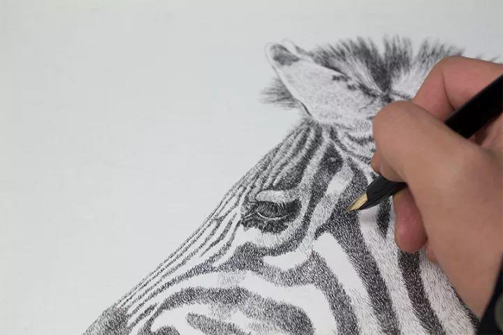 90后男孩的极品钢笔画,细腻的让人窒息插图148