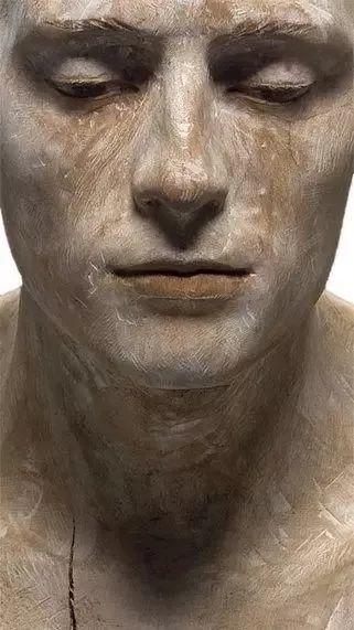 他硬把一桩桩木头弄成人体女神,惊艳世界,首次来中国就轰动美院插图11