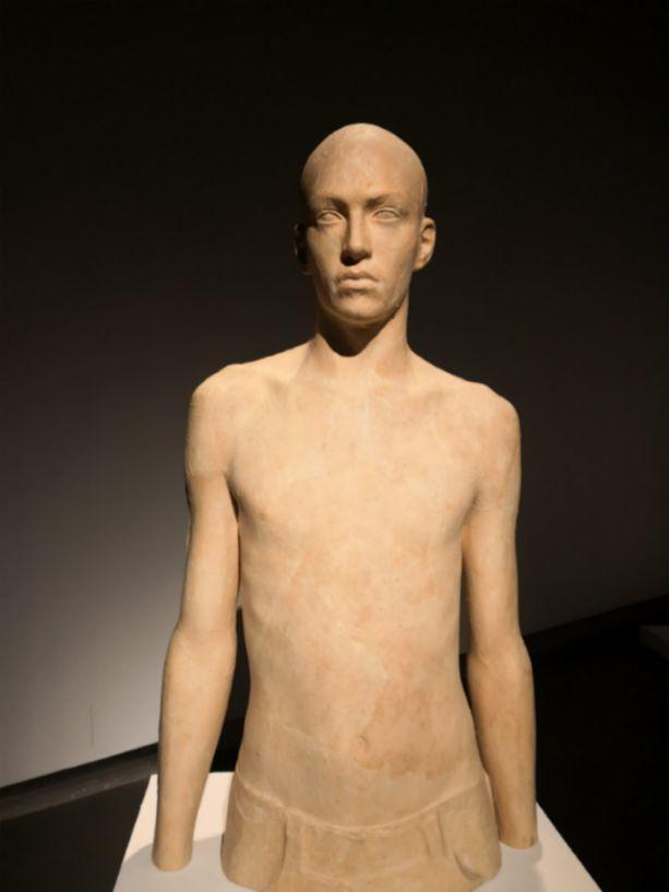 他硬把一桩桩木头弄成人体女神,惊艳世界,首次来中国就轰动美院插图94