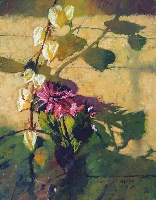 阳光、花卉和颜色 美国C·Michael Dudash插图5