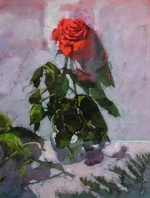 阳光、花卉和颜色 美国C·Michael Dudash插图15