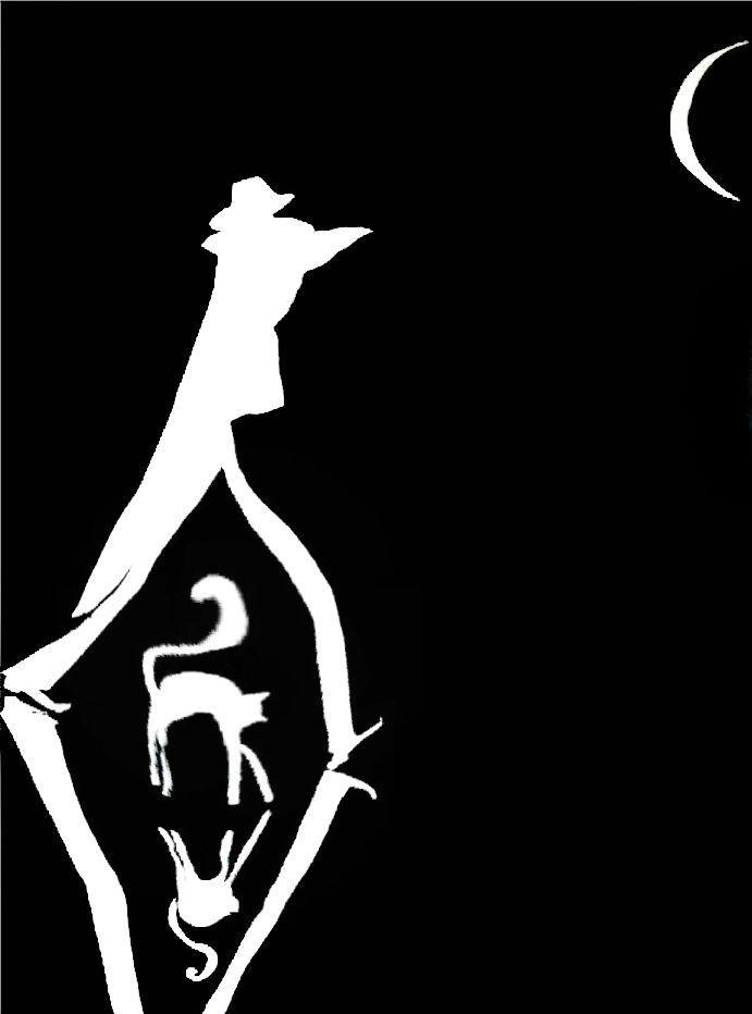 威尼斯、夜晚、猫 | 波兰Justyna Kopania插图17