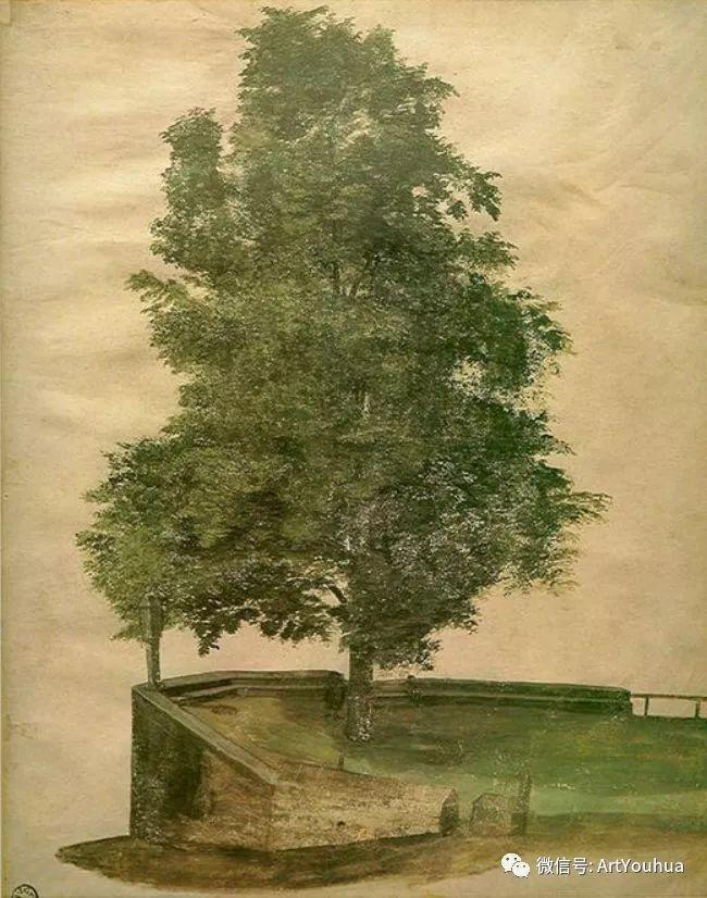 连载No.6 一生要知道的100位世界著名画家之丢勒插图63