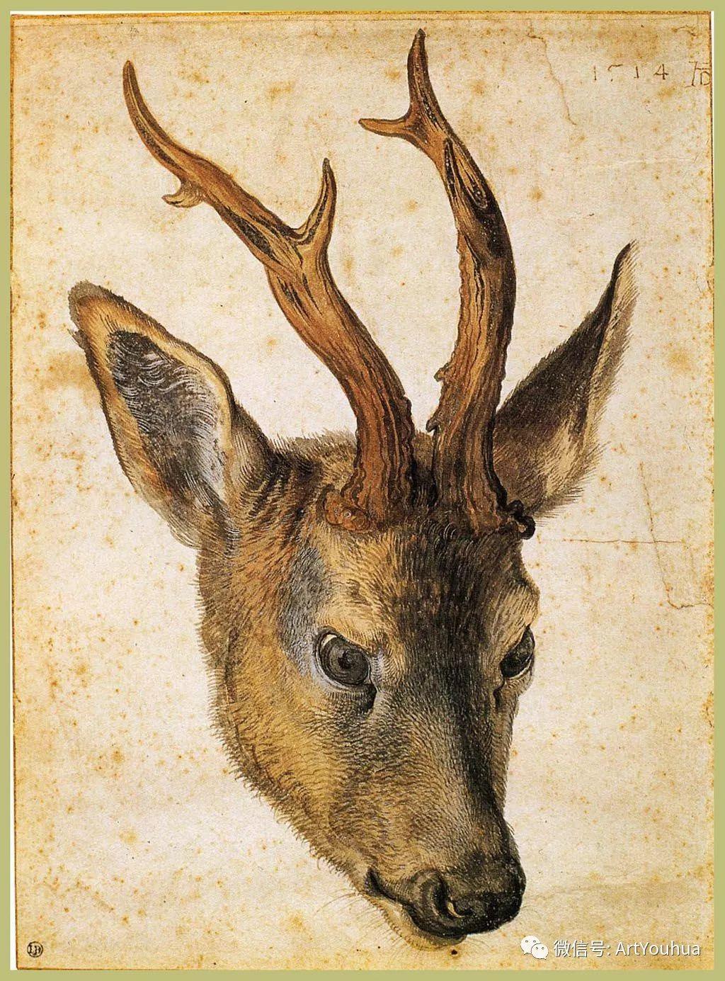 连载No.6 一生要知道的100位世界著名画家之丢勒插图148