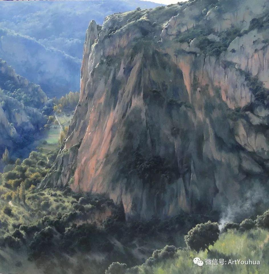 他拥有超过一百个国家和国际绘画奖项插图17