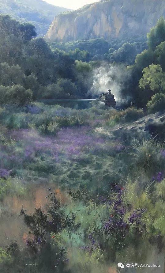 他拥有超过一百个国家和国际绘画奖项插图23