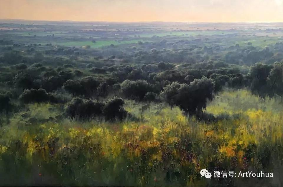 他拥有超过一百个国家和国际绘画奖项插图33