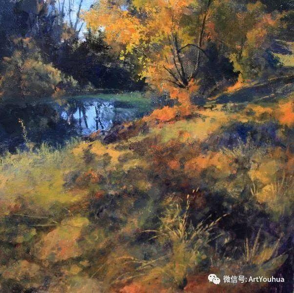 他拥有超过一百个国家和国际绘画奖项插图49