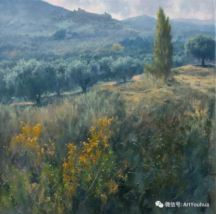 他拥有超过一百个国家和国际绘画奖项插图91