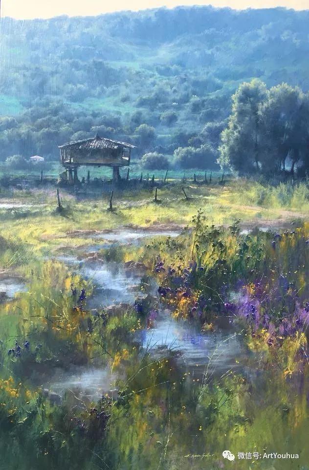 他拥有超过一百个国家和国际绘画奖项插图109