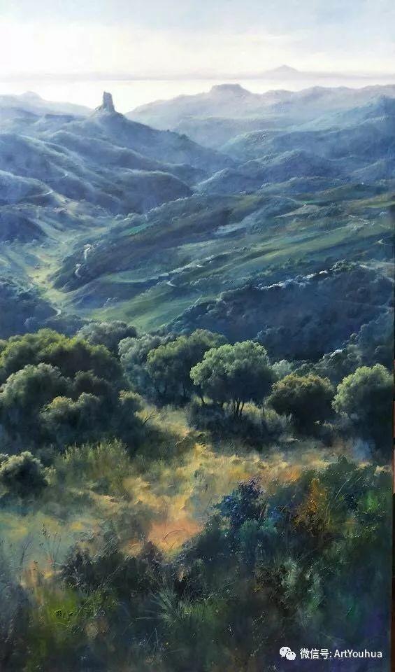 他拥有超过一百个国家和国际绘画奖项插图137