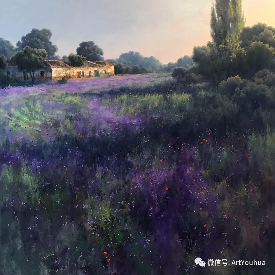 他拥有超过一百个国家和国际绘画奖项插图141