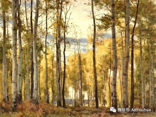 旷野风景画 美国Clyde Aspevig作品欣赏插图27