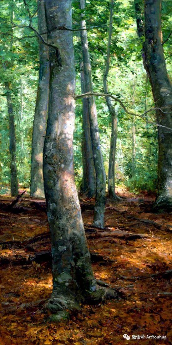 旷野风景画 美国Clyde Aspevig作品欣赏插图39