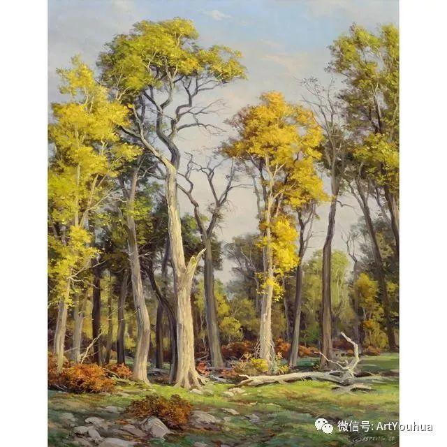 旷野风景画 美国Clyde Aspevig作品欣赏插图43