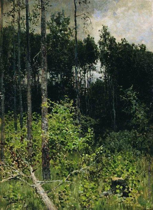 """""""情绪风景""""画家 俄罗斯列维坦(1860-1900)插图17"""