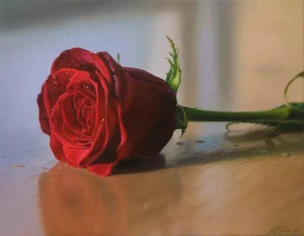 花卉写实 法国Javier Arizabalo作品插图
