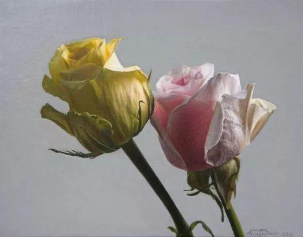 花卉写实 法国Javier Arizabalo作品插图10