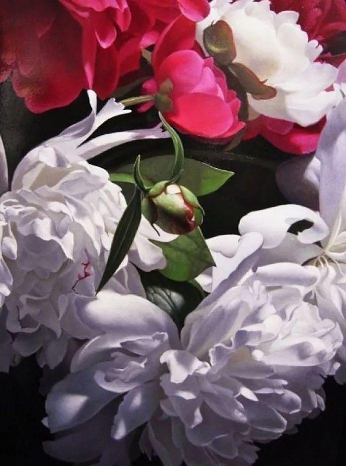 花卉绘画 美国女画家Nancy Depew作品欣赏插图31