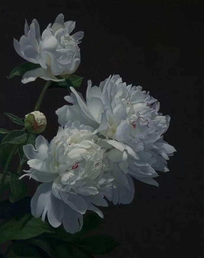 花卉绘画 美国女画家Nancy Depew作品欣赏插图33