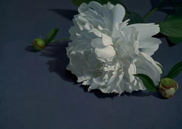花卉绘画 美国女画家Nancy Depew作品欣赏插图37