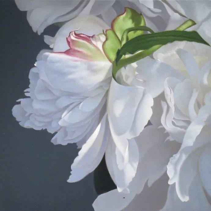 花卉绘画 美国女画家Nancy Depew作品欣赏插图39