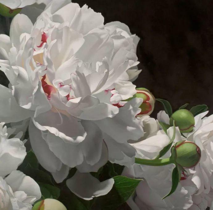 花卉绘画 美国女画家Nancy Depew作品欣赏插图41