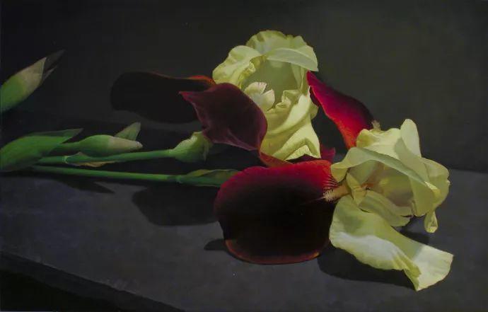 花卉绘画 美国女画家Nancy Depew作品欣赏插图45